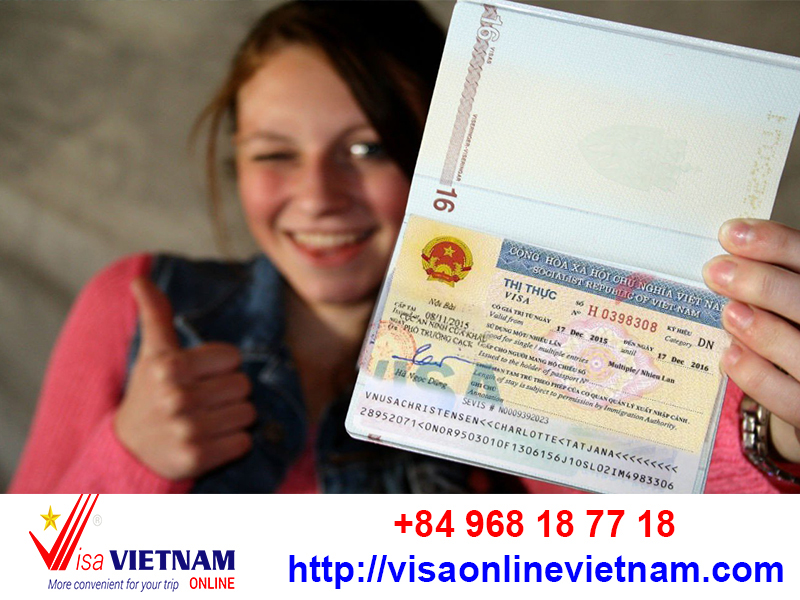visa online vietnam 6 months or 1 years
