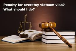 Penalty for overstay Vietnam visa? What should I do?